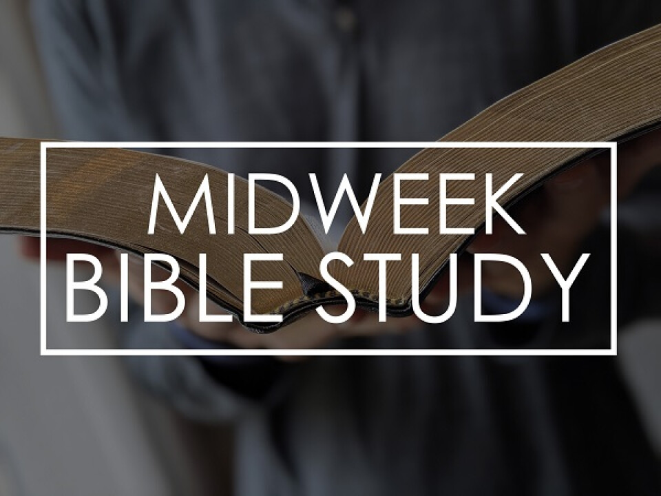 In-Person Summer Bible Study